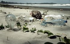 Study warns: There could be more plastic than fish in the ocean by 2050