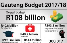 Education remains the big ticket item in Gauteng budget