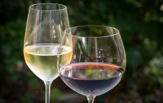 The Wine Feature: From dark berries and spice to fruity tropical flavours
