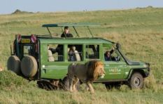 Wildlife still the biggest drawcard for tourism to Kenya