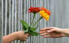 [LISTEN] Are humans wired for generosity?