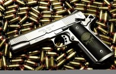 How Would Amending The Firearms Control Act Help South Africa?
