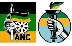 Has Makhosi Khoza's new party appropriated the ANC colours?