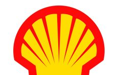 ANC ups stake in Shell ahead of shale gas exploration
