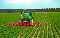 Booming agriculture boosts South African economy to grow at 3.1%