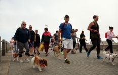 300 strut their stuff on the Promenade for charity