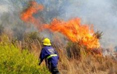 Contentious firebreaks not a quick fix, says City