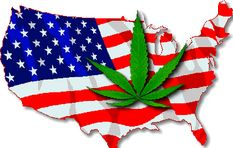 Washington DC, Oregon and deeply conservative Alaska legalise dagga