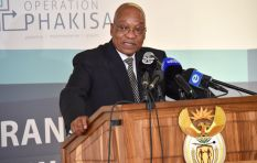 Black parties in Parliament should unite over land issue - Zuma