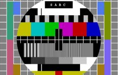 Do we still need the SABC?