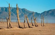 Climate change takes centre stage at world conference in Cape Town