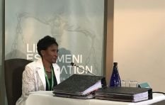 Blame game continues as Life Esidimeni hearings resume