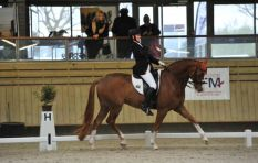 How Philippa Johnson-Dwyer got back in the saddle despite disability