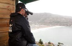 Shark Spotters SA: Keeping Beaches Safe