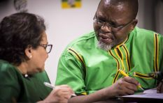 ANC proposes reducing its national executive committee