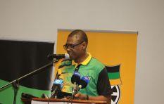 """We can't base unity on Ramaphosa and Dlamini-Zuma individually"" - ANC chairman"