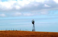 [Listen] How should South Africans talk about land?
