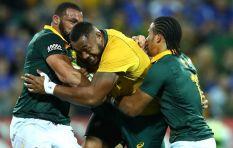 Springboks are doing better despite a Wallabies draw - Xola Ntshinga