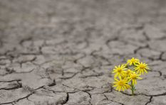 How to build a resilient business and mind-set