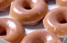 Global doughnut company and coffeehouse chain Krispy Kreme to launch in SA