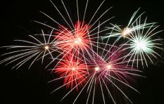 SPCA granted interdict to stop City of Ekurhuleni fireworks