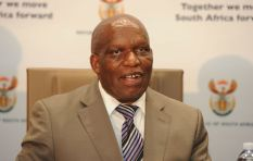 Stop playing politics when dealing with transformation in agriculture - Zokwana