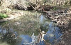 What can be done about the Hennops River pollution?