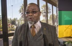 Mantashe's comments on state resources implies ANC has lost control - Mathekga