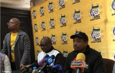 [LISTEN] ANC Gauteng ready for elective conference despite looming court action