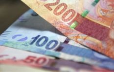 Did financial markets overreact to Zuma firing Nene?