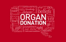 Organ donation - the giver, the receiver, and the person on the waiting list