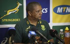 'Yes Allister Coetzee should go'