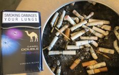 '82% of South Africans want to see  graphic health warnings on cigarette packs'