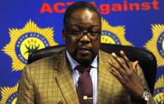 'No need to panic' says Minister Nhleko on South African terror alerts