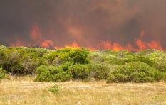 [UPDATE] Watch video as Overberg fires claims 31 houses