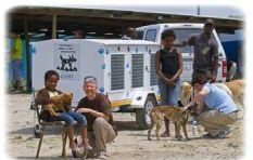 #Mandeladay: Mdzananda Animal Clinic