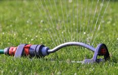 City discourages Capetonians  from using boreholes to water their gardens