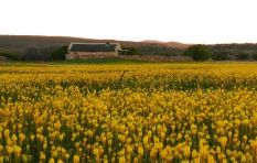 Travel feature: 'In Spring the fields here are a spectacle - it's unbelievable'