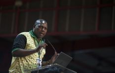 Mkhize's withdrawal from ballot a show of unity - ANC EC chair
