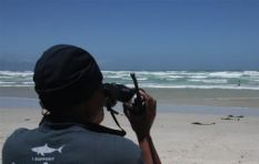 Shark-spotting programme to reduce shark attacks
