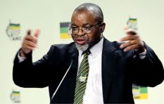 Struggle veterans calling for Zuma to go must talk to ANC directly says Mantashe