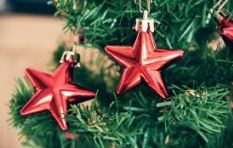 Ideas on how to remain friendly to the planet during the festive season