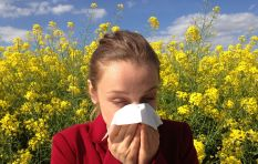[LISTEN] Combating seasonal allergies and hay fever