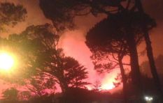 Firefighters continue to battle the devastating Vredehoek fire