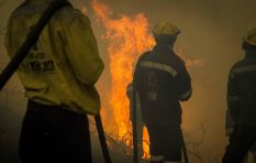 #KnysnaFire: Expert warns of fires being rekindled