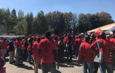 ​Newly formed Saftu to champion interests of working class, says Numsa