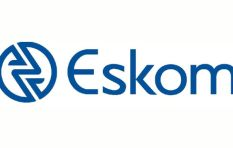 'Eskom can bring the whole country down if it fails'
