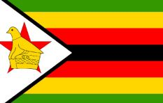 Zim coup puts Mnangagwa in the driver's seat - former advisor