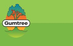 Meet Johan Nel of Gumtree South Africa (largest classifieds site in the country)