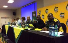 'Mantashe, Ramaphosa, Mkhize were testing waters by speaking against President'